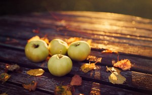 6968501-apples-leaves-autumn-evening